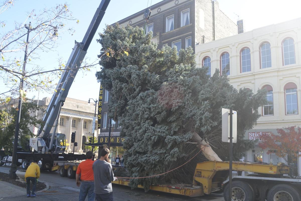 Downtown Racine Christmas tree arrives | Local News ...
