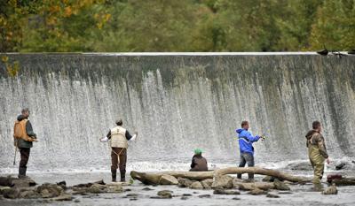 Horlick Dam