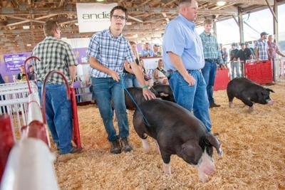 Racine County Fair