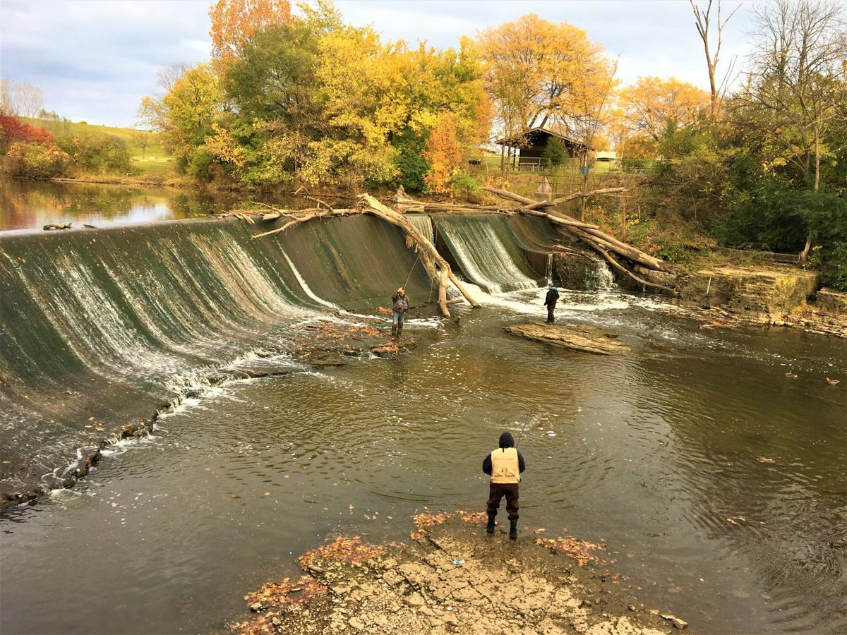 Salmon fishing on Root River downstream from Horlick Dam