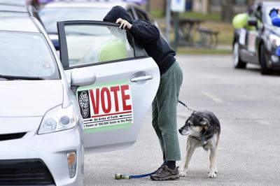 Sorry Fido, dogs can't vote