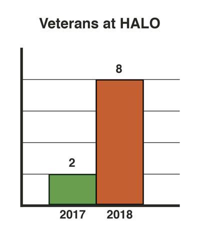 HALO statistics - Veterans