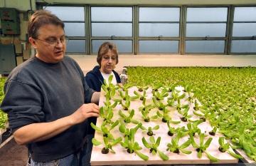 Natural Green Farms 5\u002ejpg