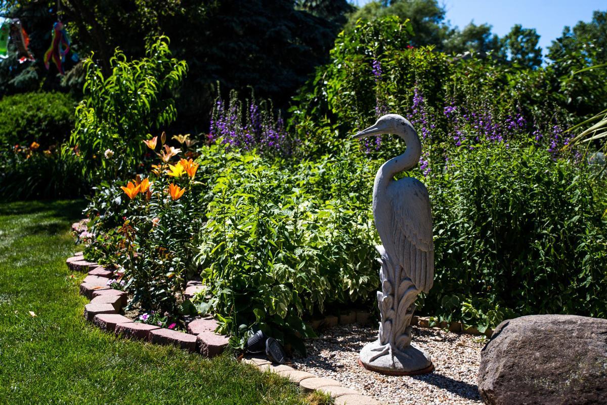 Ray's Garden