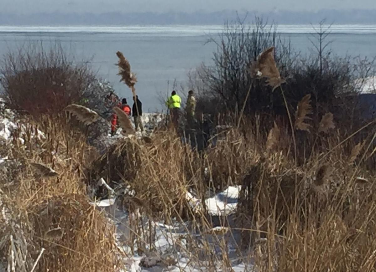 Body located along lakeshore
