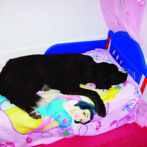 Sleeping on a Snow White Bed