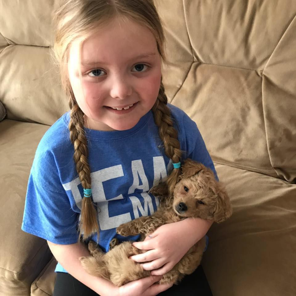 Girl with brain tumor requests dog photos