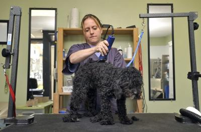 Pet Pals Grooming Salon