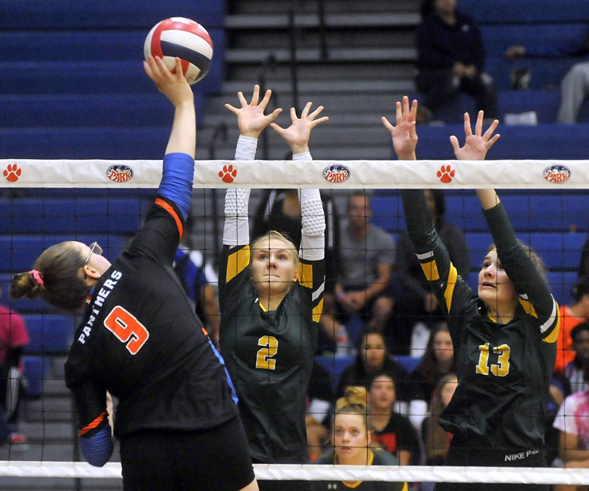 Case vs. Park girls volleyball