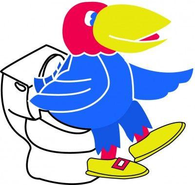 An illustrated Jayhawk sits on a toilet