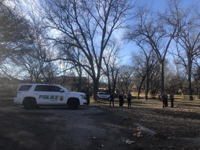 park shooting