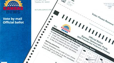 Mail-in Voting (copy)