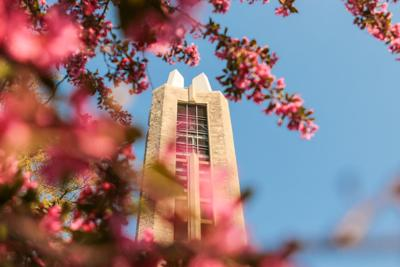 Flowers surround the Campanile Memorial in front of a clear sky (copy)