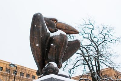 Fallen snow sits on a Jayhawk statue in front of a tree and Strong Hall.