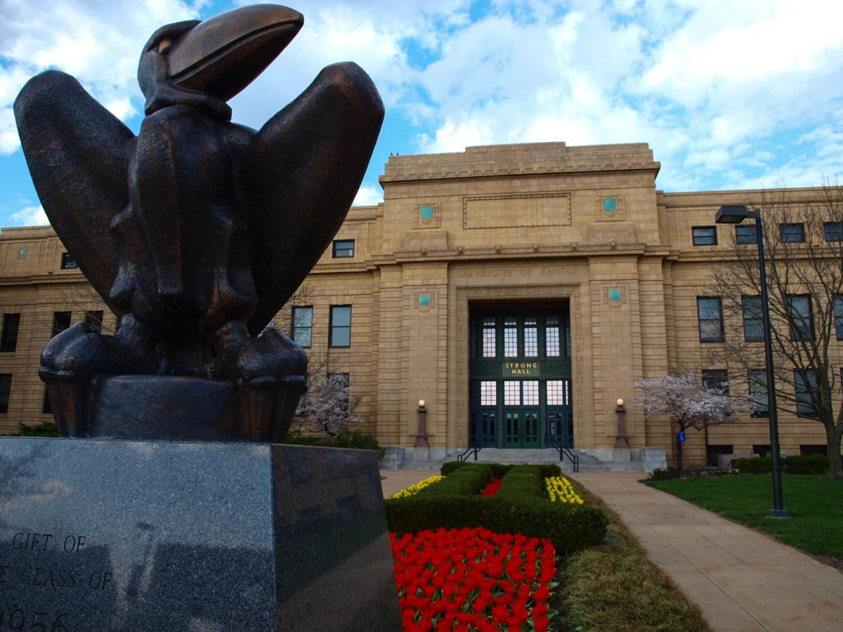 Tulips bloom behind the bronze Jayhawk statue in front of Strong Hall (copy)