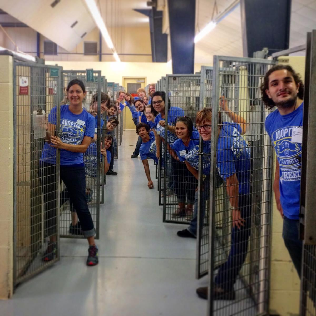Clear the Shelter Day