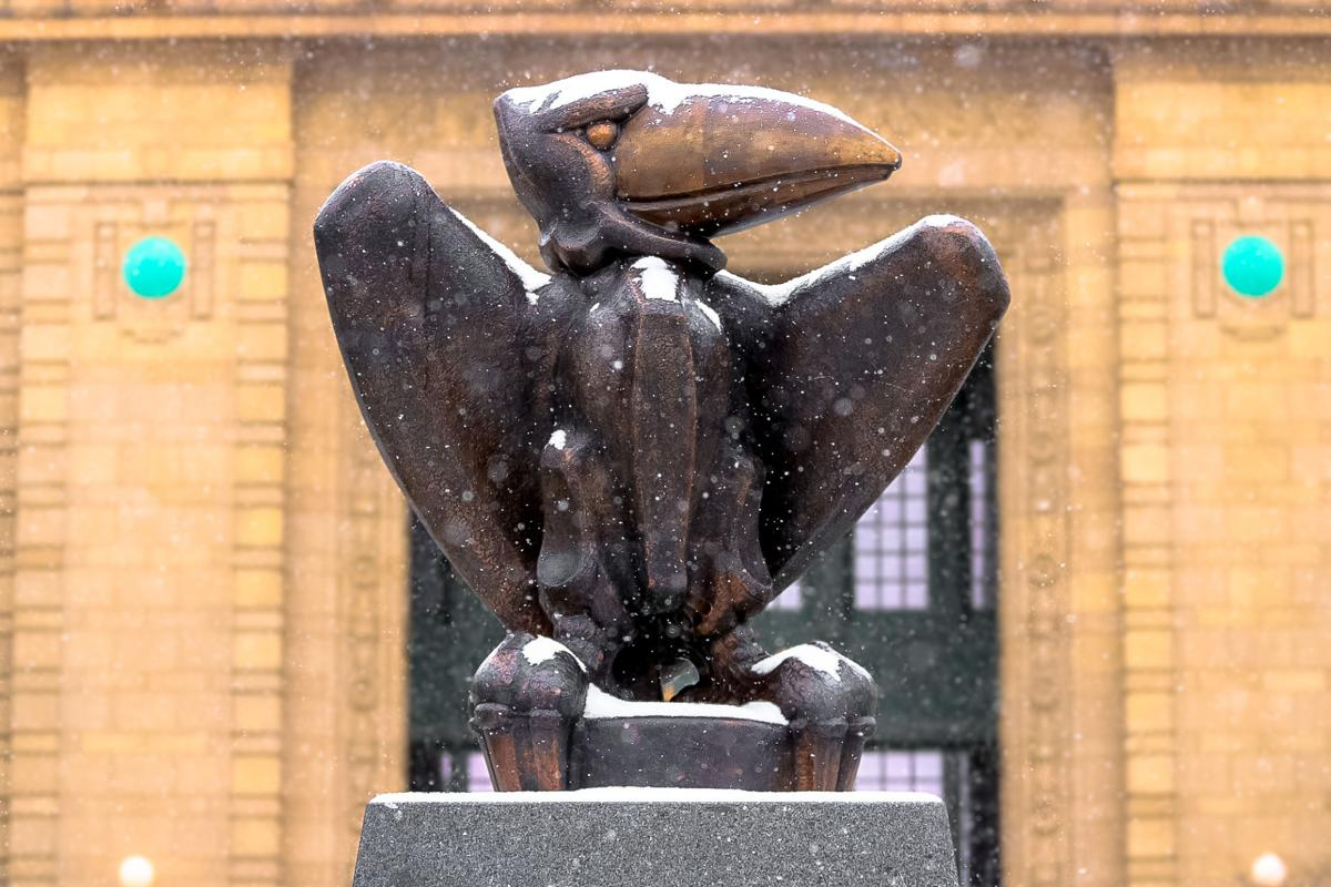 Snow falls outside of Strong Hall and covers the Jayhawk statue