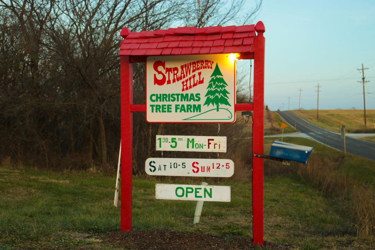 Even after 33 years, local Christmas tree farm expects ...