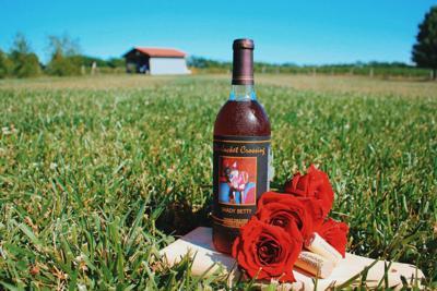 CHALK wine BlueJacket