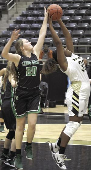 Lady Lions split games, improve record to 4-1