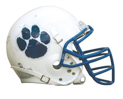 Bearcat Helmet