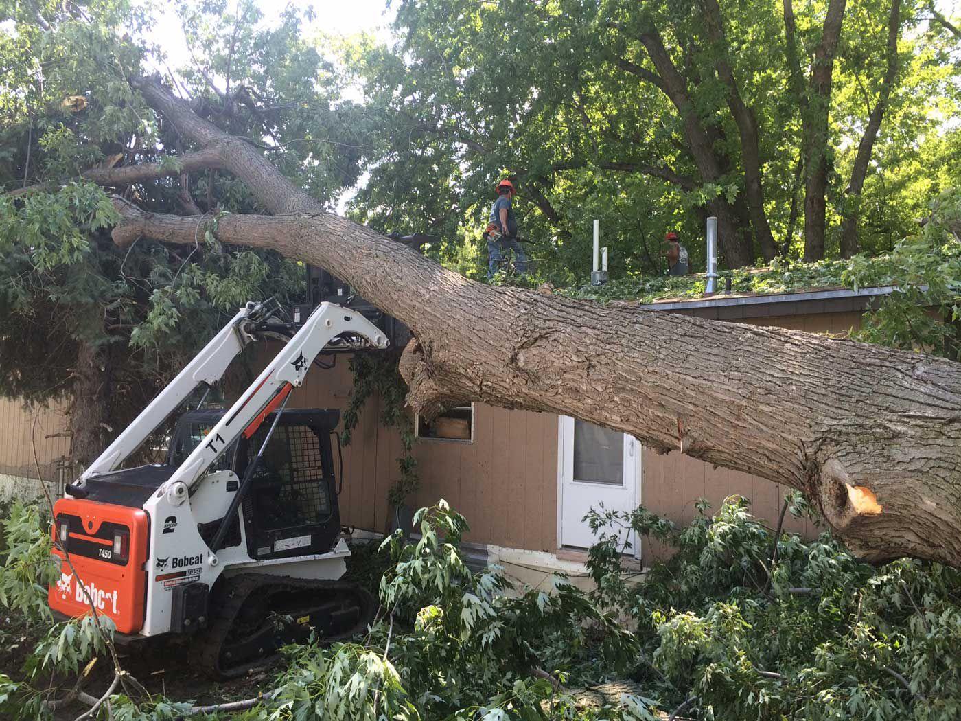 Three trees crush roof of Kearney couple\u0027s home | Local ...