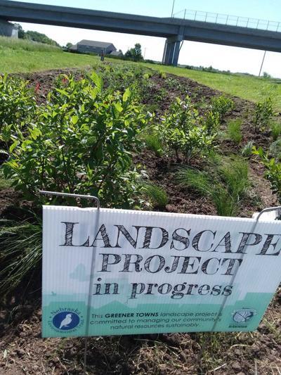 Uncompleted rain garden