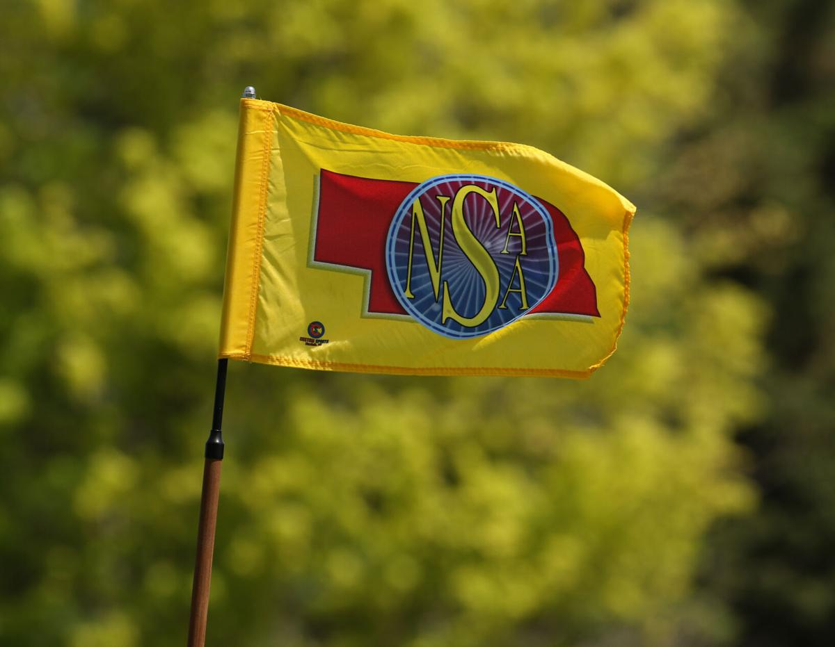 NSAA Golf