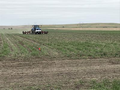 In Nebraska, crop producers and educators partner up on field research projects