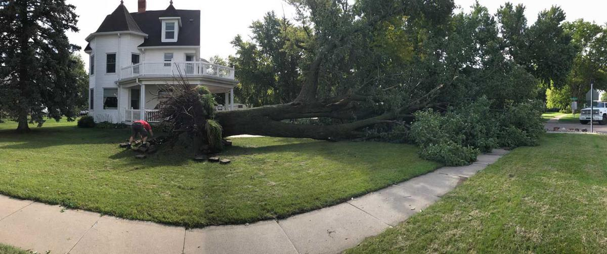 100 mph winds uproot trees, cut Ravenna power Sunday morning