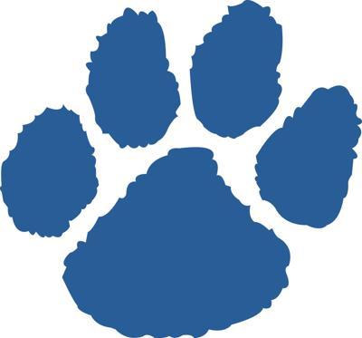 Bearcat Blue