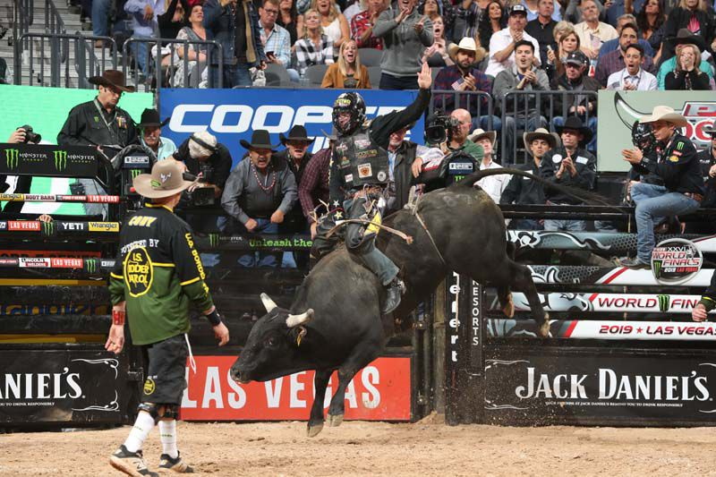 bull riders matt triplett credit andy watson bull stock media.JPG