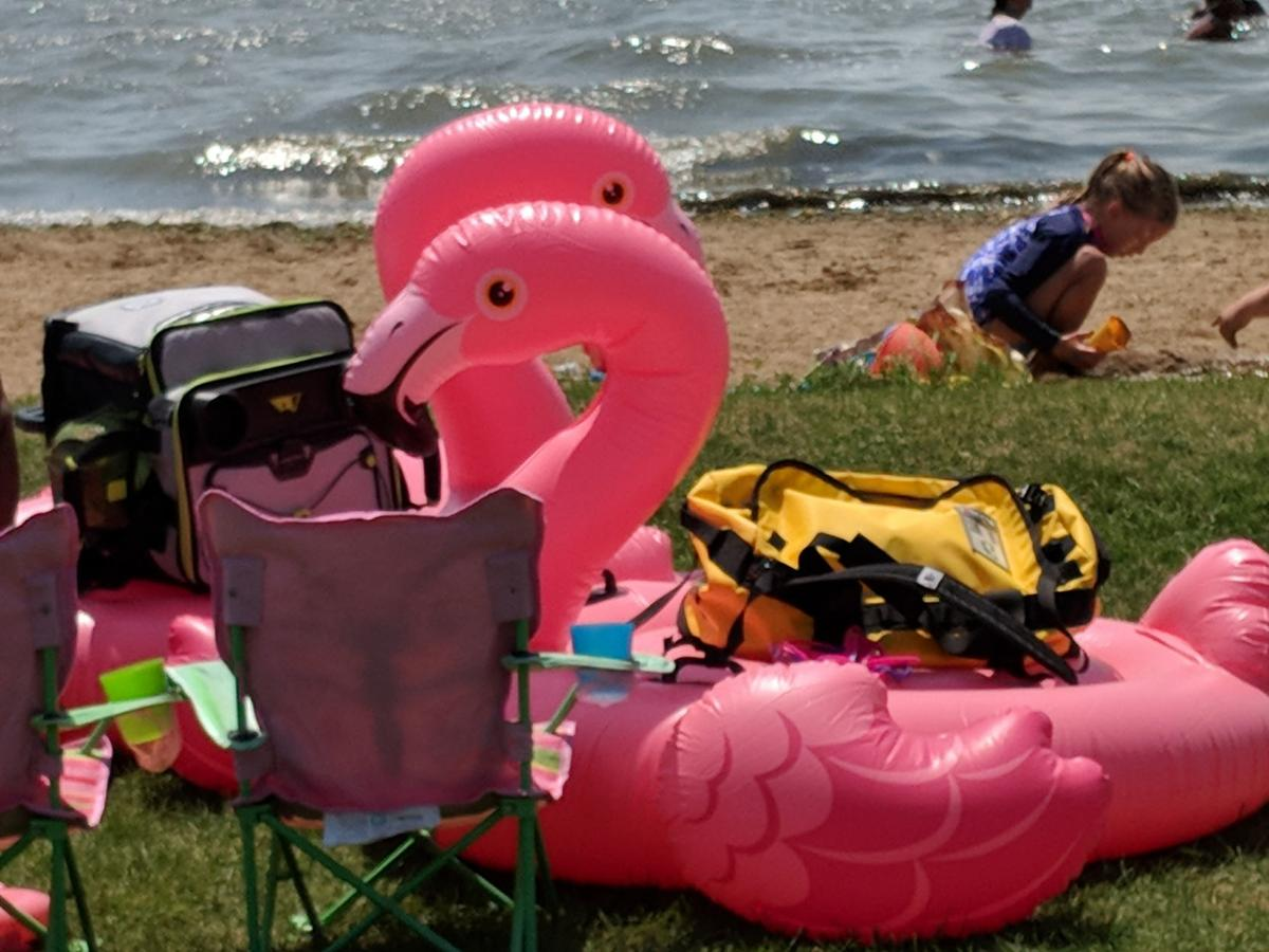Beaches 2019 flamingo floaties.jpg