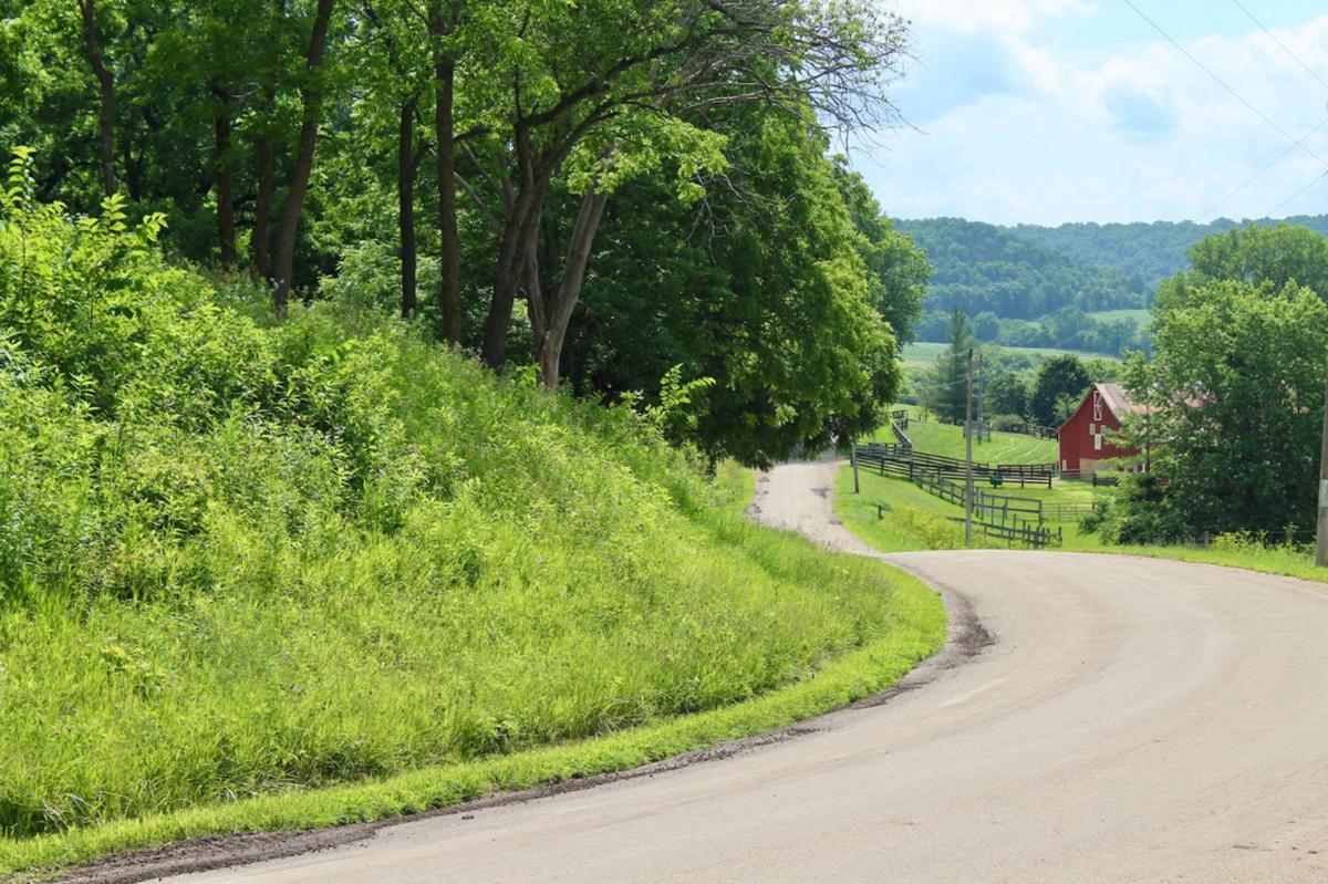 Bergin Irish Hollow Road