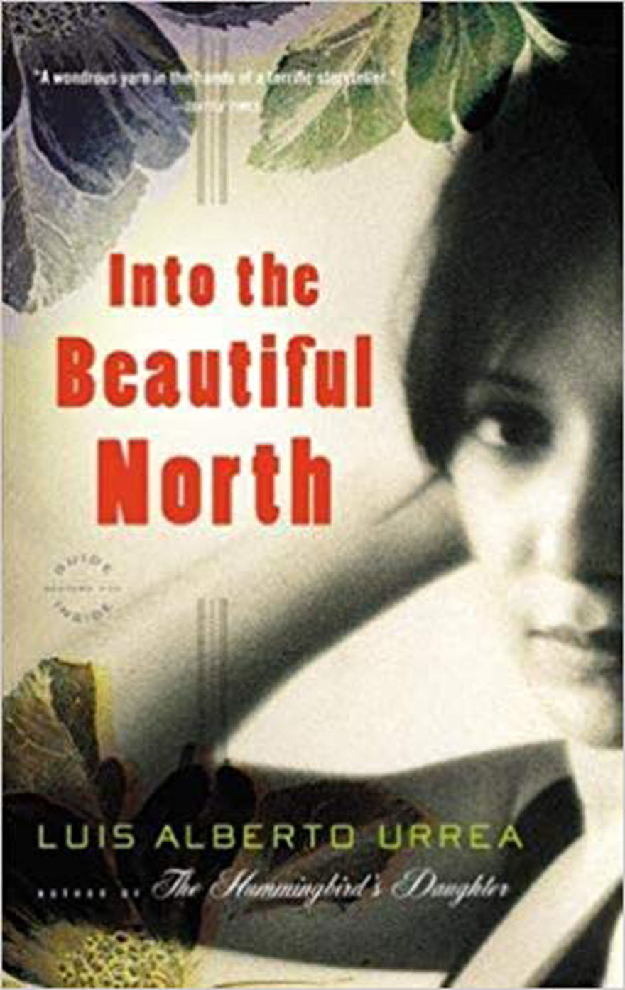 Into the Beautiful North novel