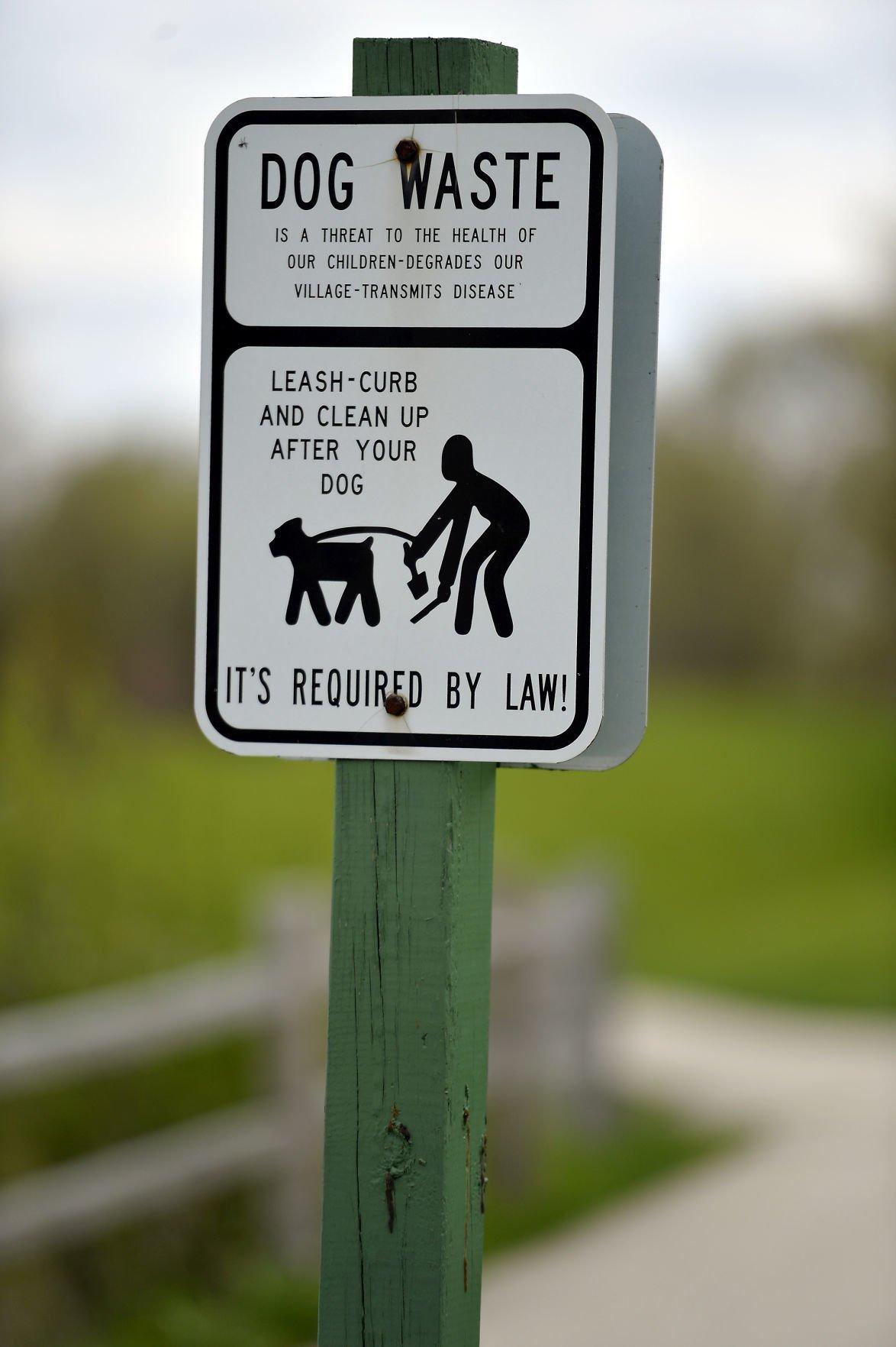 FIX IT UNLEASHED DOGS PLEASANT PRAIRIE
