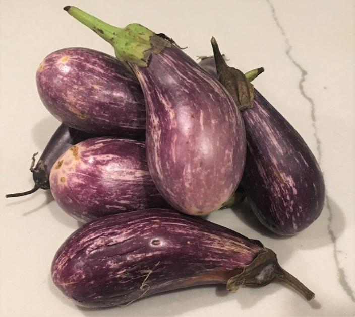 Kate Jerome: Ratatouille! Versatile eggplants ready to roast, grill, fry or stew