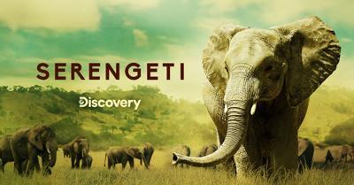 Discovery Serengeti