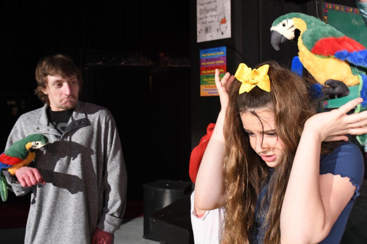 Junie B parrots scene