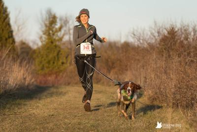 Running and Beyond: Canicross a growing sport