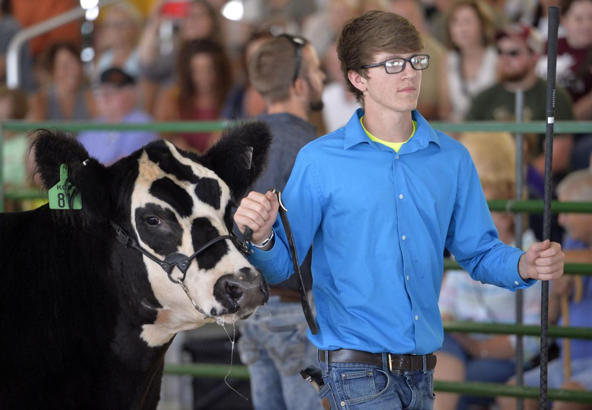 COUNTY FAIR GRAND STEER AUCTION