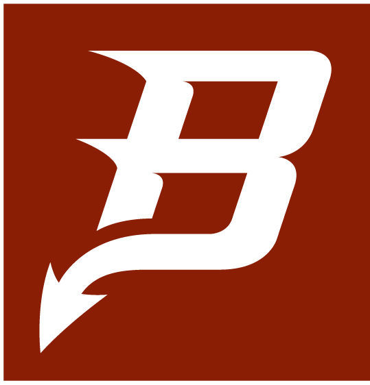 bradford logos