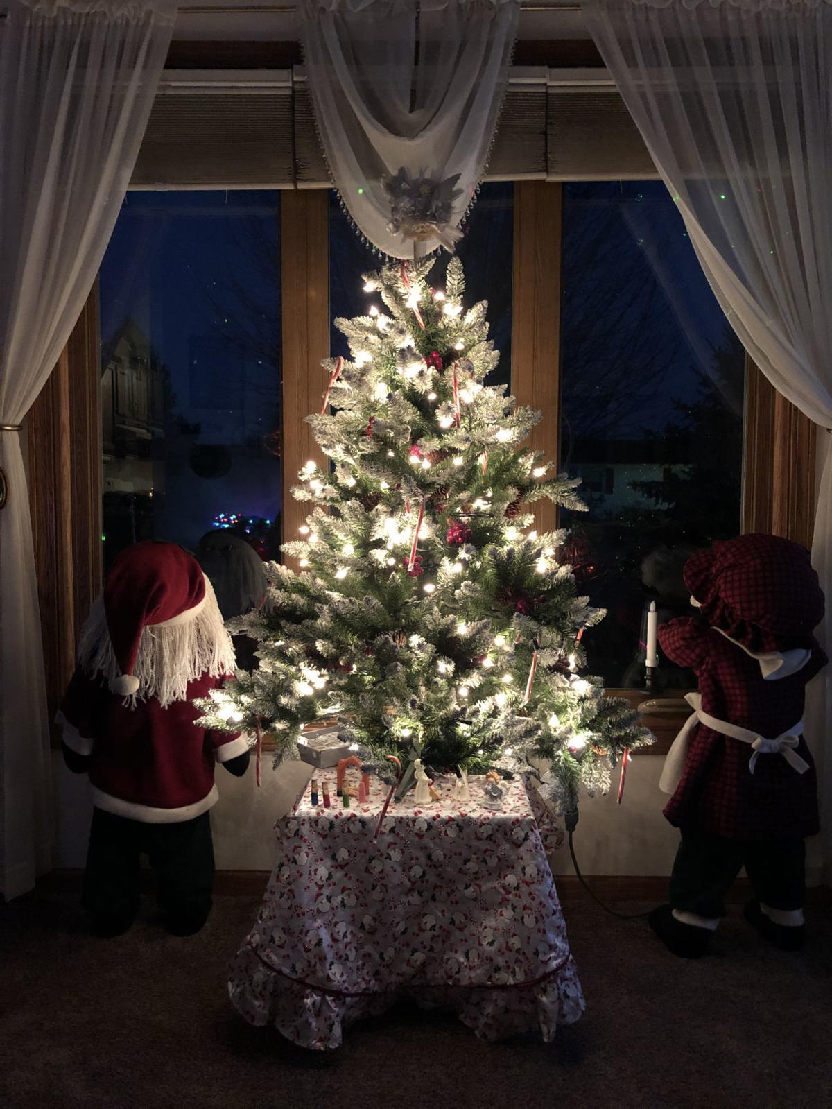 Kenosha News Wants To See Your Best Dressed Tree Kenoshanews Com