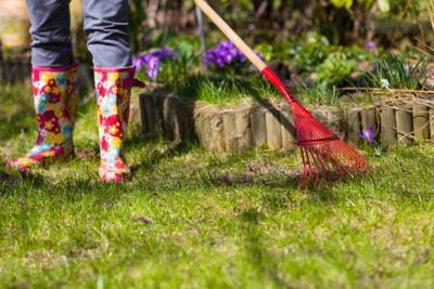 spring gardener.jpg