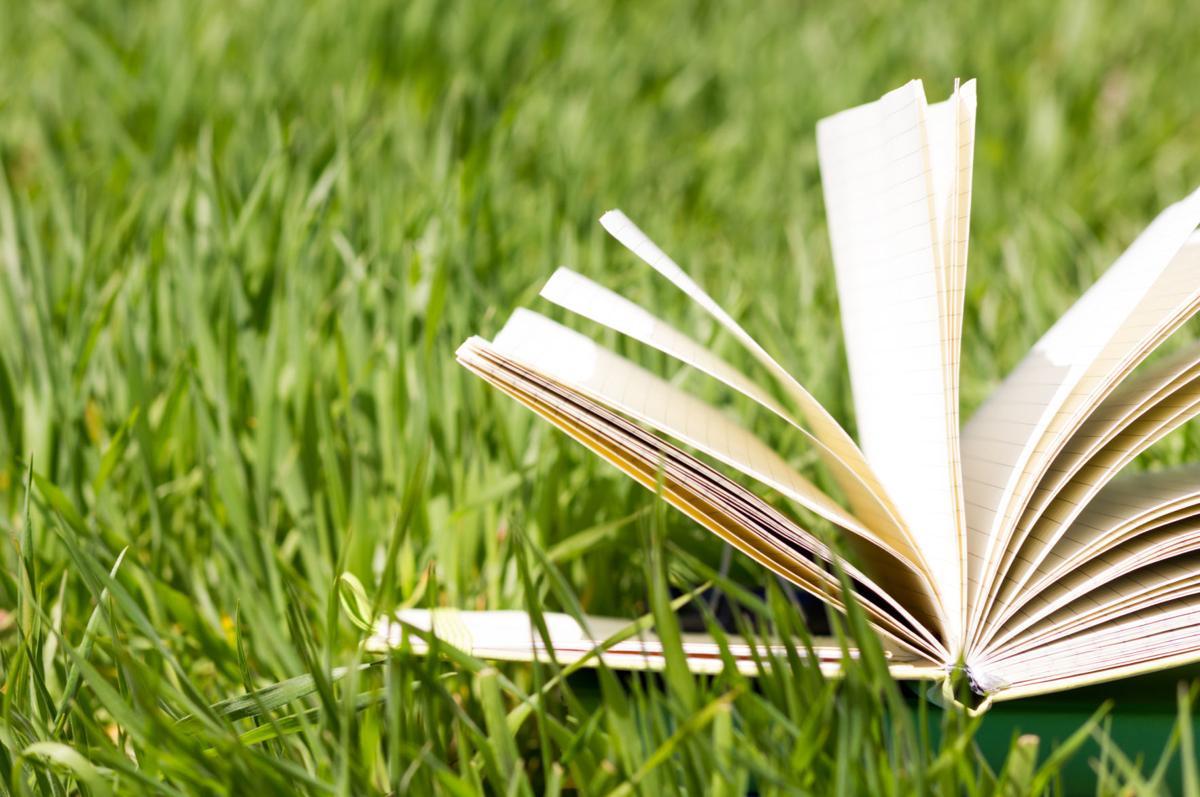summer reading book.jpg