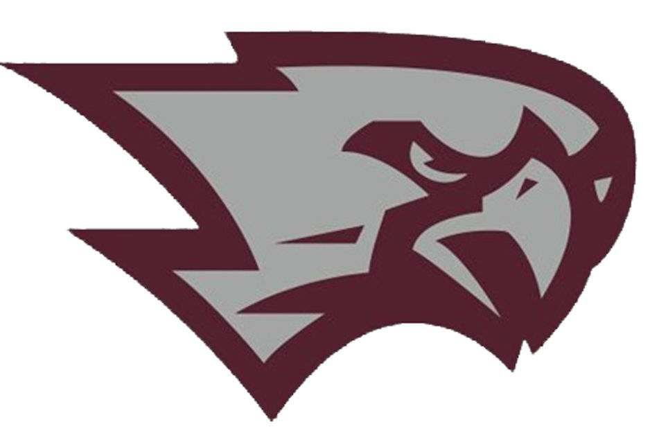 Westosha Central Falcons Logo