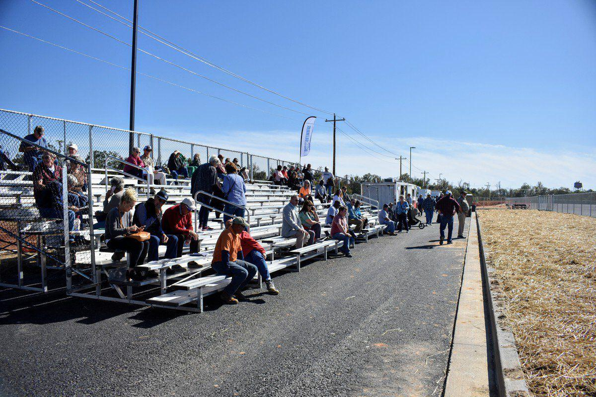 Oak Grove inaugural harness race kicks off with temporary tents, bleachers