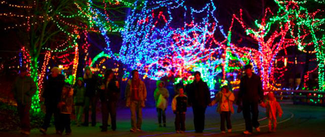 the indianapolis zoo has been transformed into a winter wonderland during the holiday season