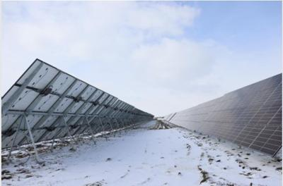 Total Seed Production solar panels