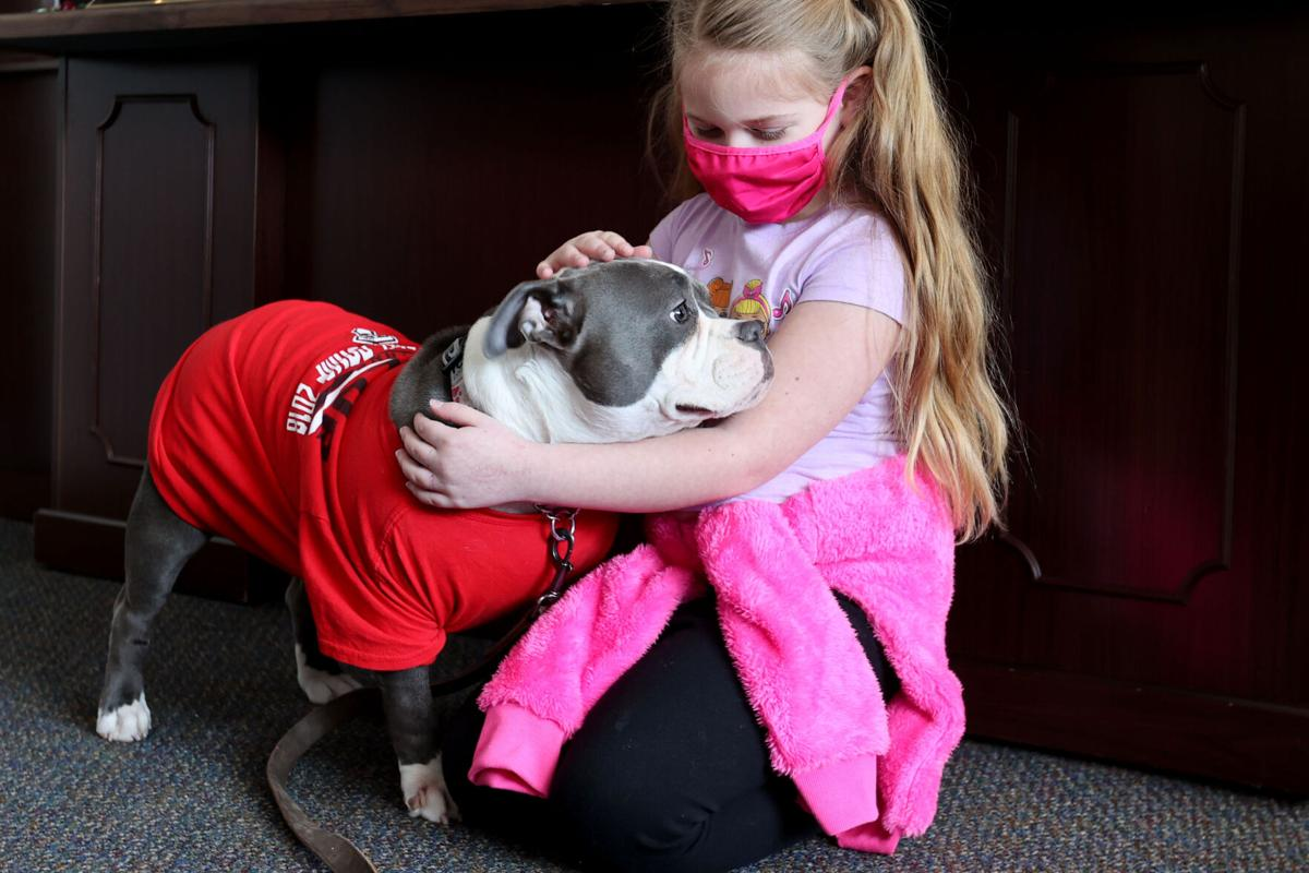 TES Therapy dog 01.JPG